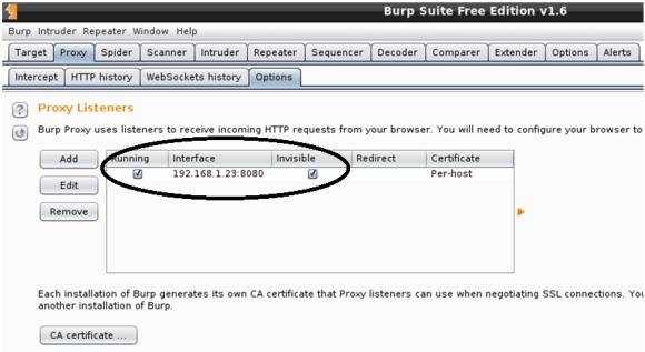 malware-analysis-framework-burp